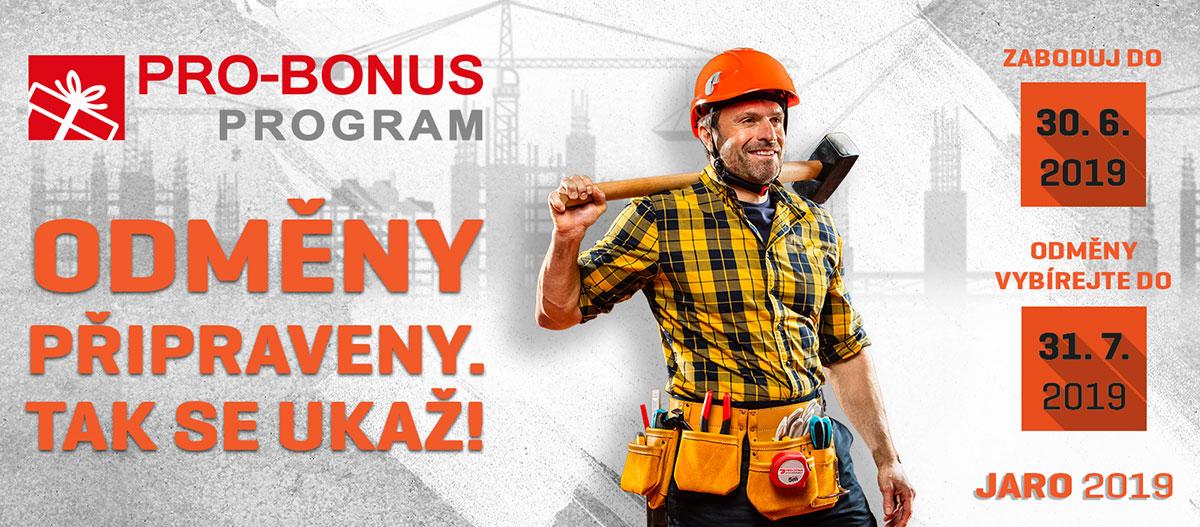 Pro-bonus program